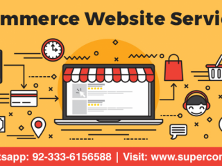 ECommerce Website Design Service At Affordable Price