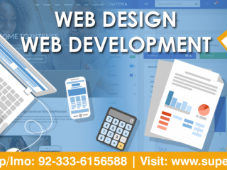 World Class Web Design & Development Service