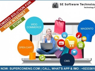 Best Ecommerce Store Website Development Service