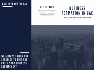 Free zone Entity Company Formation in UAE - #0544472159