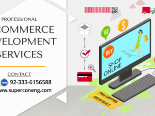 Professional eCommerce Website Design Service