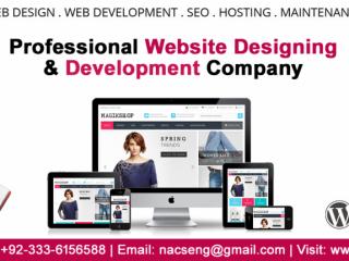 Professional Website Designing & Development Company