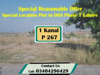 Special Reasonable Offer Location Plot In DHA