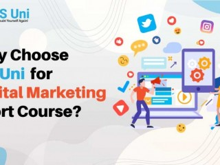 Why Choose IPS Uni for Digital Marketing Short Course?